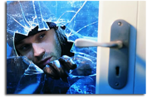 Different Business Security Systems in Fort Lauderdale