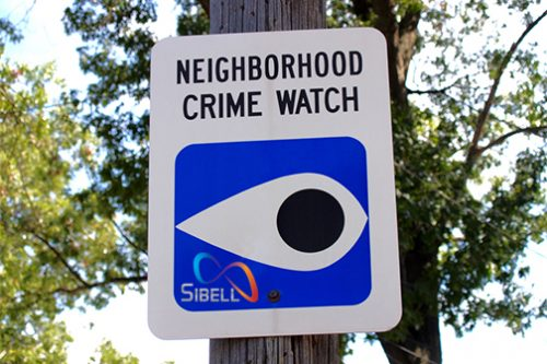Neighborhood Surveillance Cameras